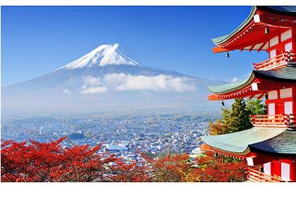 Chương trình khuyến mãi sữa Snow Baby nội địa Nhật Bản