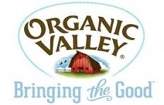 Sữa tươi Organic Valley