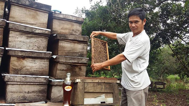 mật ong nguyên chất xuân lộc