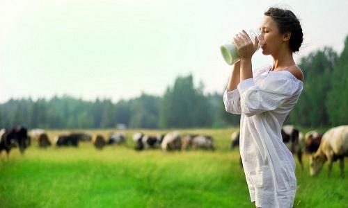sữa tươi lif úc