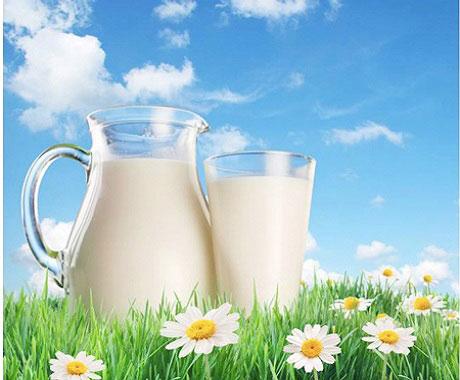 thùng sữa bắp non lif dạng 48 hộp 180 ml