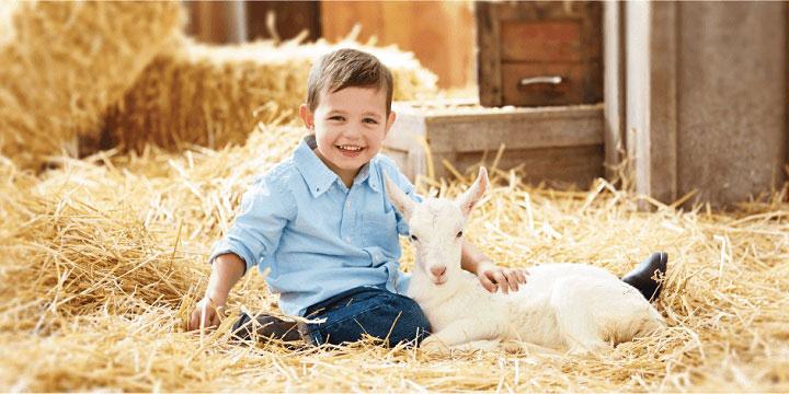 Sữa Bellamy Organic số 3 cho trẻ trên 1 tuổi nhập khẩu úc
