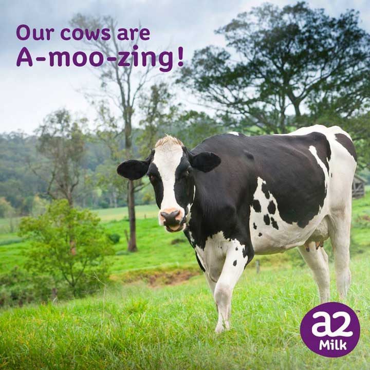Sữa bột tách béo A2 Úc bịch 1kg