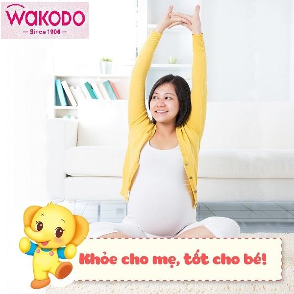 Sữa cho mẹ mang thai và cho con bú Wakodo Mom hộp 830g Nhật Bản