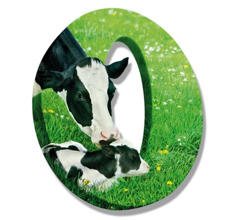sữa tươi tiệt trùng Lif Úc ít đường hộp 1 lít