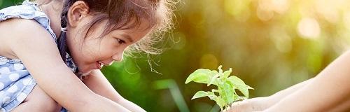 Sữa Kid Essentials Úc lon 800g cho trẻ 1-10 tuổi